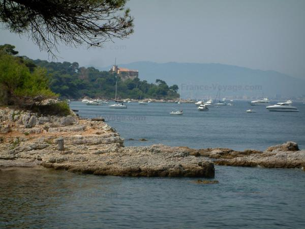Lérins island - Sainte-Marguerite island: branches of a pine tree in foreground, cliffs, sea with boats, forest, Royal fort (Sea museum) and coast of the French Riviera in background