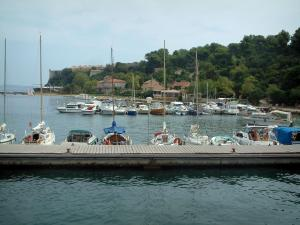 Lérins island - Sainte-Marguerite island: jetty, moored boats, houses of the village, forest and Royal fort