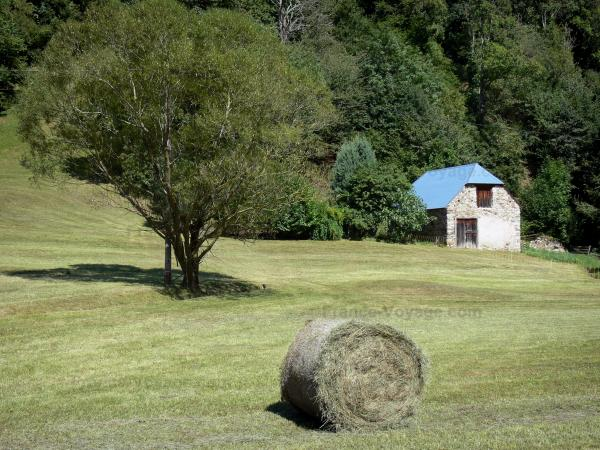 Lesponne valley - Haystack, tree in the middle of a pasture and stone house; in the Bigorre area