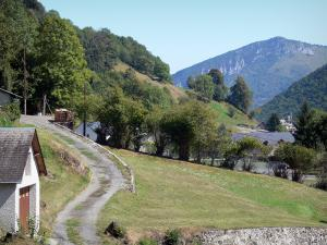 Lesponne valley - Road, houses and trees in the Bigorre area