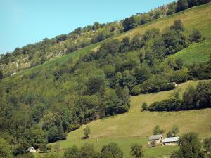 Lesponne valley - Houses, trees and sloping meadows in the Bigorre area
