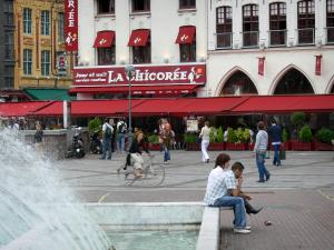 Lille - Fountains of the Rihour square and facades of houses