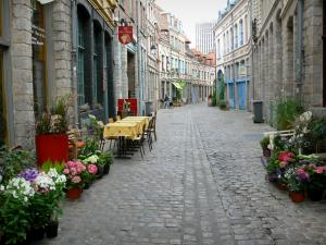 Lille - Paved street decorated with flowers and houses of Vieux-Lille (old town)