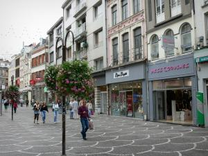 Lille - Shopping street with its hanging flowers, its shops and its houses