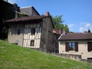 Limoges - Timber-framed houses and lawn dotted with flowers