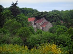 Limousin landscapes - Blooming brooms and houses of the Masgot village surrounded by trees