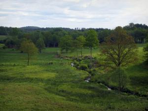 Limousin landscapes - Meadows, small river and trees