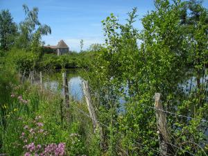 Limousin landscapes - Wild flowers, fence, shrubs, pond and the Carmelites convent in Mortemart