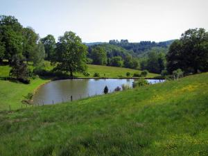 Limousin landscapes - Meadows, pond and trees
