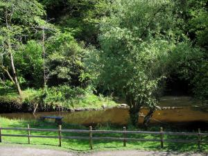 Limousin landscapes - Wooden barrier, bank, river and trees