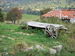 Livradois-Forez Regional Nature Park - Old cart in a meadow