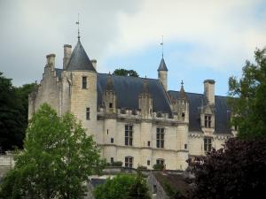Loches - Royal residence and trees