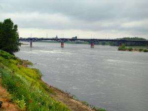 Loire Valley - Bank with wild flowers, bridge spanning the Loire River, and cloudy sky