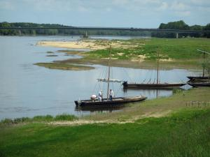 Loire Valley - Banks, the Loire River with boats, bridge and trees