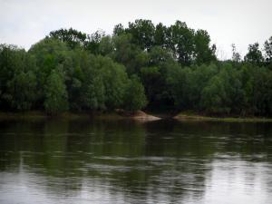 Loire Valley - The Loire River and trees along the water