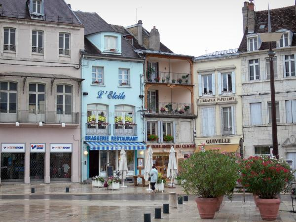 Lons-le-Saunier - Facades of houses and shops of the Liberté square, flower-bedecked shrubs in jars