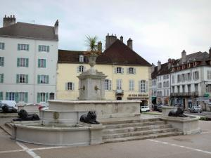 Lons-le-Saunier - Lions fountain and buildings of the city