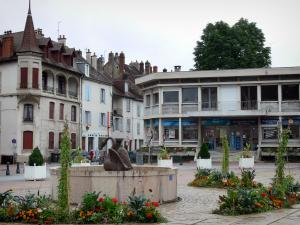 Lons-le-Saunier - Cygne fountain and flowerbeds of the November 11th square, houses of the city