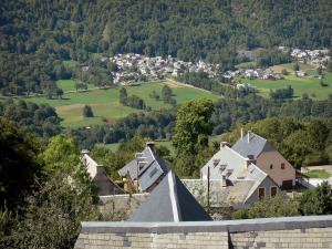 Louron valley - Roofs of houses overhanging a village in the valley