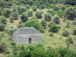 Luberon - Dry stone hut (borie) surrounded by trees