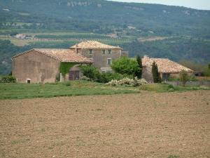 Luberon - Field, group of houses, trees, forest and hill