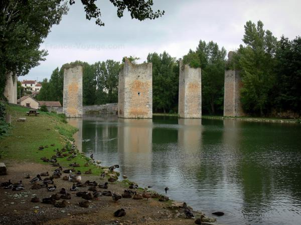 Lussac-les-Châteaux - Pond, drawbridge pillars of the former castle (remains), mallard ducks on the shore, trees and houses