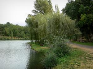 Lussac-les-Châteaux - Pond, trees along the water and shore decorated with picnic tables