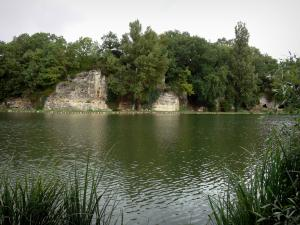 Lussac-les-Châteaux - Reeds in foreground, pond, shore, trees and Fadets cave on the right