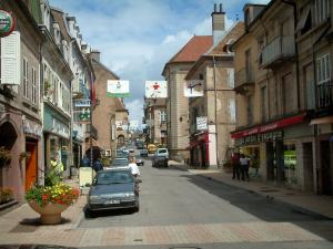Luxeuil-les-Bains - Shopping street of the spa town with its houses and its shops