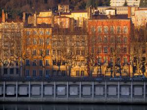Lyon - Houses with colourful facades in old Lyon, trees and quay of the Saône river