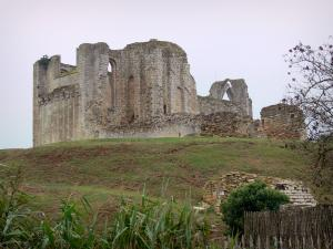 Maillezais abbey - Remains of the Saint-Pierre abbey: ruins of the abbey church
