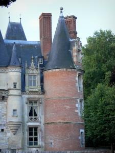 Maintenon castle - Tower and facade of the Renaissance-style castle, trees