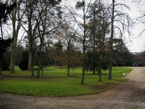 Malmaison castle - Alleys, lawns and trees in the park