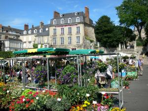 Le Mans - Market on the Place des Jacobins square with its flowers booths