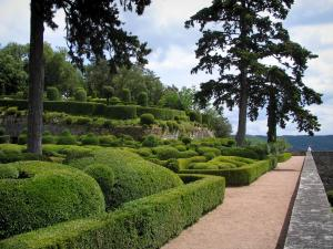 Marqueyssac gardens - Path, hand-clipped box trees and trees