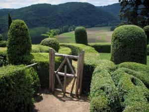 Marqueyssac gardens - Hand-clipped box trees in the park with view of the surrounding fields and hills covered with forests