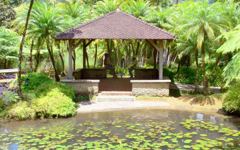 Jardin de balata 40 images de qualit en haute d finition for Jardin meaning