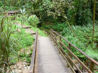 Martinique Regional Nature Park