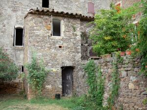 Le Mas Soubeyran - Hamlet of Mas Soubeyran, in the town of Mialet, in the Cévennes: stone house with creepers