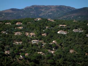 Massif des Maures mountains - Forest with villas (Provencal houses) and hills in background