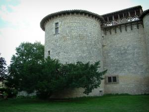 Mauriac castle - Tower of the castle (fortress), trees and lawn
