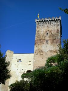 Mauvezin castle - Square keep of the medieval fortress (history and folk museum) in the Baronnies area