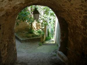 Ménerbes - Arched passage, fig tree and sloping narrow street in the village