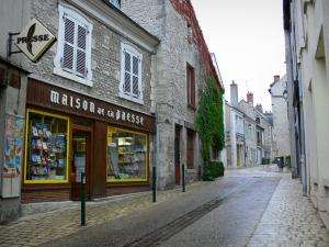 Meung-sur-Loire - Street, shop and houses of the city