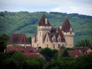 Milandes castle - Castle, chapel, roofs, trees and forest in background, in the Dordogne valley, in Périgord