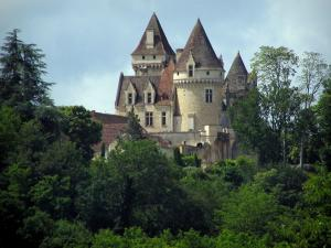 Milandes castle - Castle and trees, in the Dordogne valley, in Périgord
