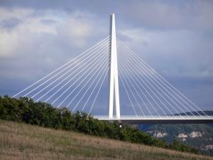 Millau viaduct - Deck, pylon and shrouds of the motorway bridge
