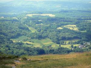 Millevaches in Limousin Regional Nature Park - Monedieres Hills: green panorama from the viewpoint of Suc in May