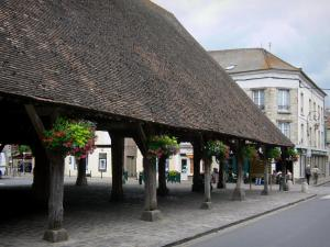 Milly-la-Forêt - Wooden covered market hall with flowers and facades of houses in the village