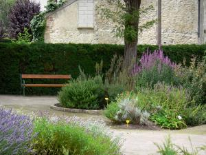 Milly-la-Forêt - Bench and plants in the herb garden